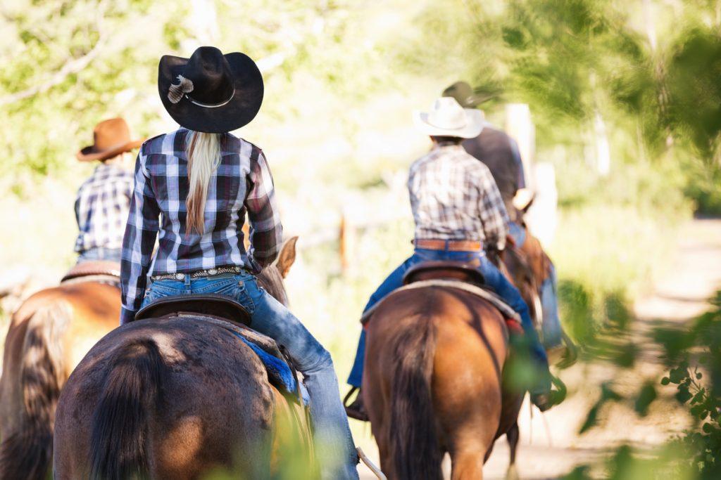 Oklahoma Horse Fair