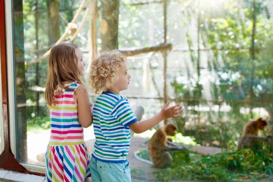 Greater Wynnewood Animal Park